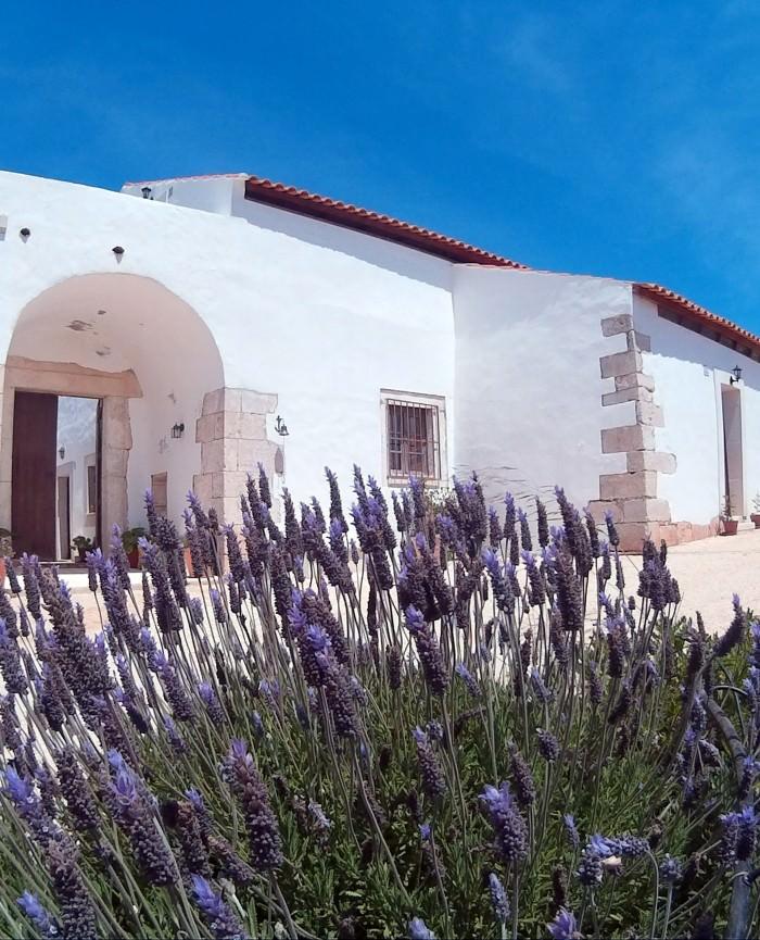 Quinta-Alagoas-Casa-dos-Bezerrinhos